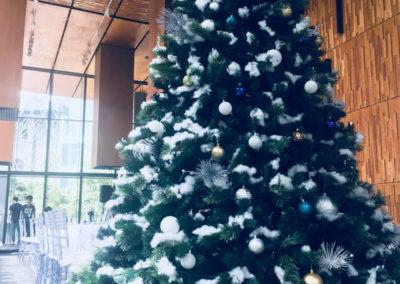 Christmas-Tree-Cold_800x1000